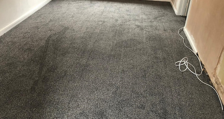 Mount Everest soft saxony carpet fitted Stockport