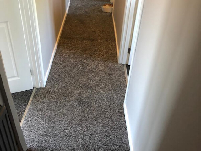 New Carpet in a rental property's in Woodley Stockport